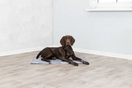 Mata chłodząca dla psa XXL 110x70cm szary marmur